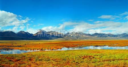 西藏高原天山水草