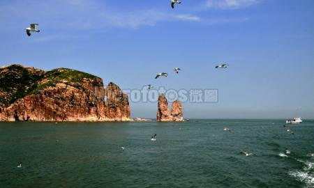 渤海灣萬鳥島