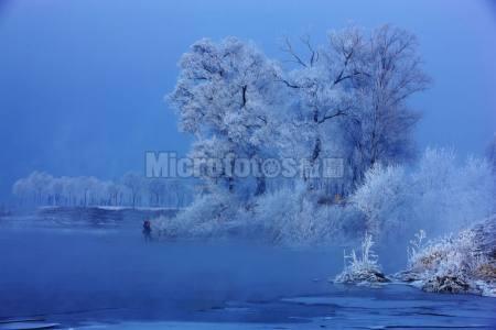 雾凇 冬季 冰雪
