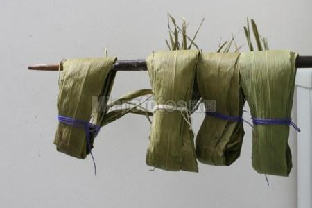 包粽子用的芦苇叶