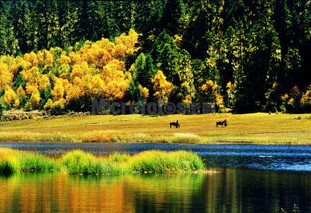 香格里拉屬都湖