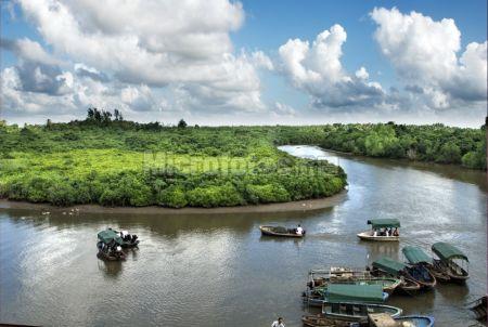 东寨港红树林