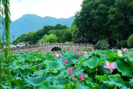 杭州西湖-西冷桥