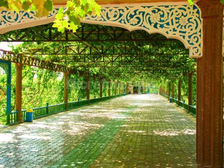 吐鲁番的葡萄沟