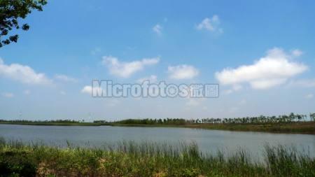 崇明岛东滩湿地公园