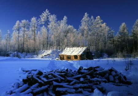 伐木人居住的的帐篷