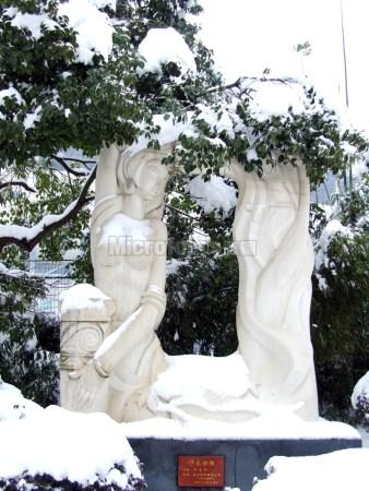 白沙古井公园雪景