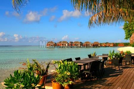 马尔代夫卡尼岛