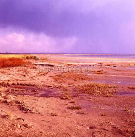 红碱淖风景