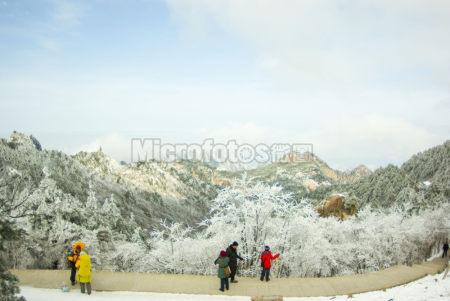 黄山雪景2