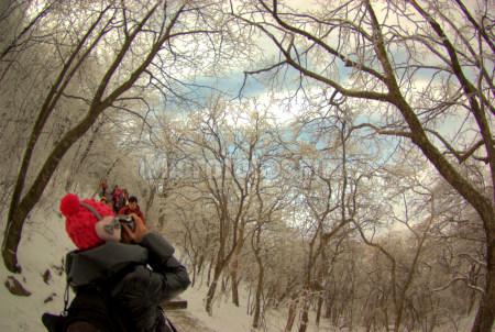 黄山雪景4