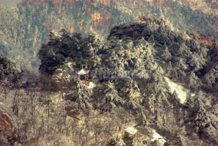 黄山雪景5