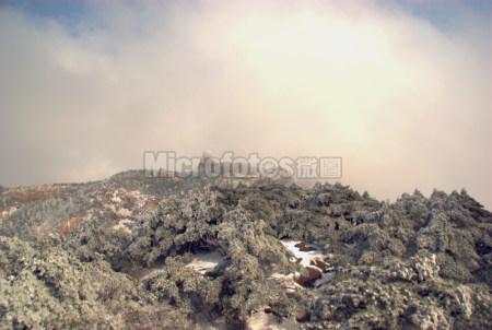 黄山雪景8
