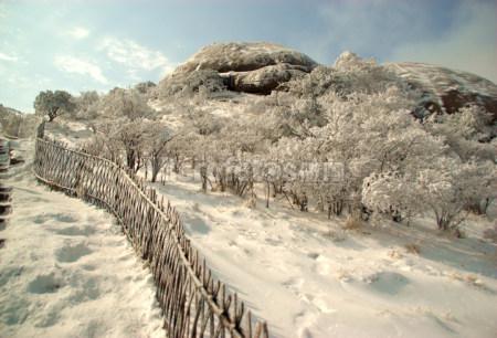 黄山雪景10