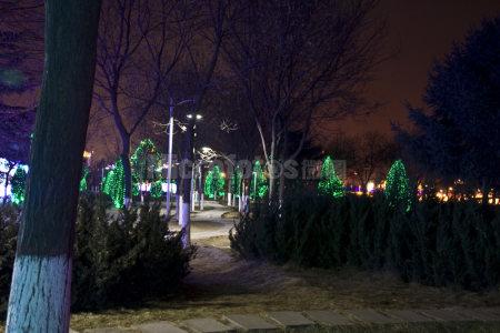 节日公园夜晚
