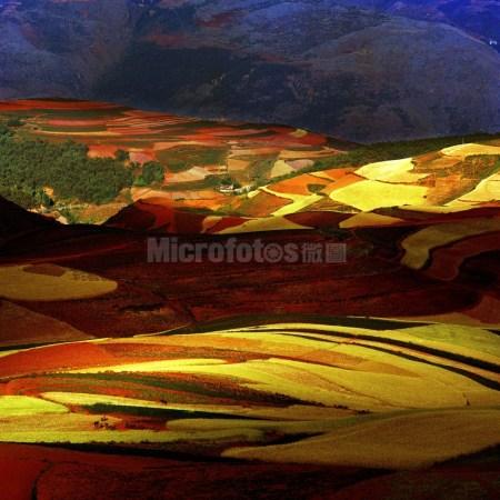 云南红土地