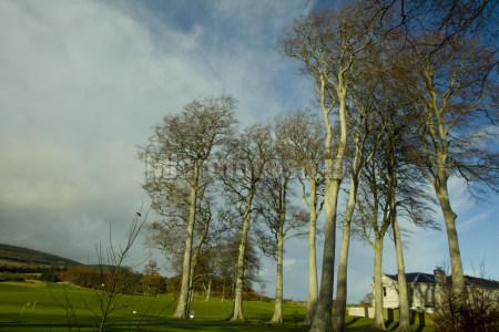 爱尔兰乡村风光