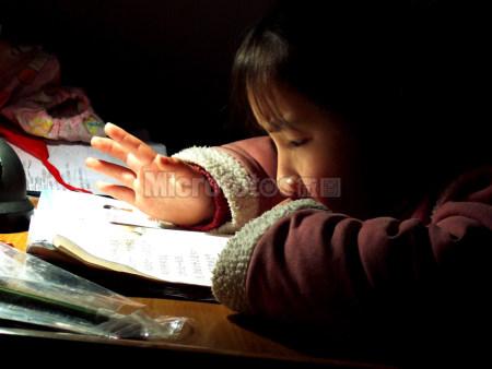 学习的儿童