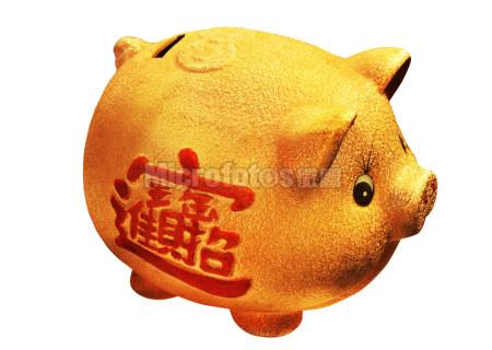 可爱的金猪储钱罐