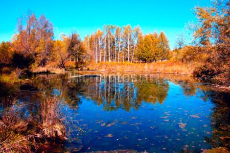 初秋根河湿地风景