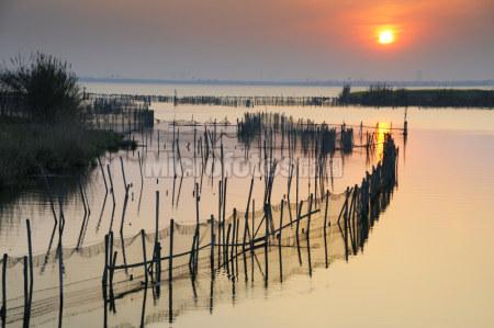 陽澄湖日落