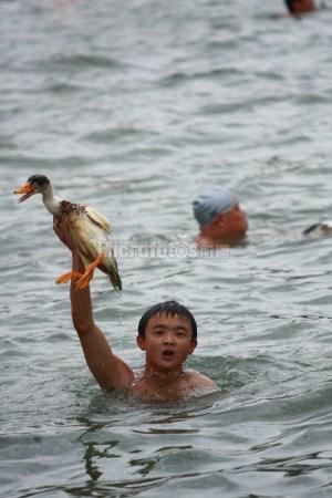 端午节抢鸭子