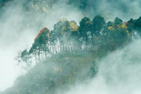 汶川三江彩林