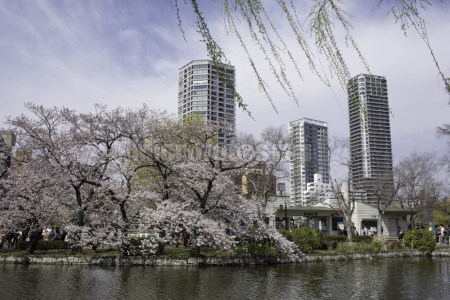 东京上野公园