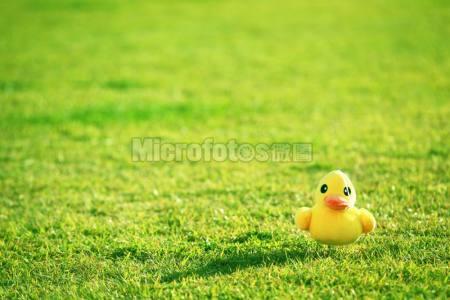 草地上的玩偶
